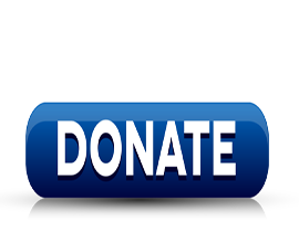 Donate Button270